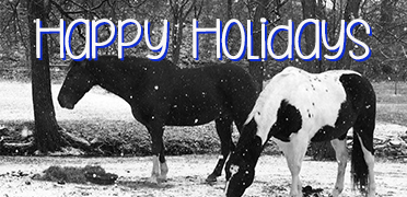 Happy Holidays - schools are closed Dec 23-Jan 3, click here